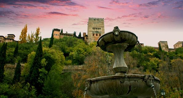 Granada, territorio de orquídeas ibéricas