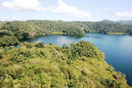 Fortalecen Plan de Rescate de Orquídeas en la Reserva de la Biosfera El Triunfo (México)