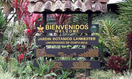 El Jardín Lankester premia la Ciencia de las Orquídeas en Costa Rica